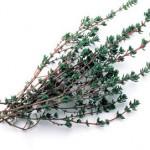 Лечение трахеита травами